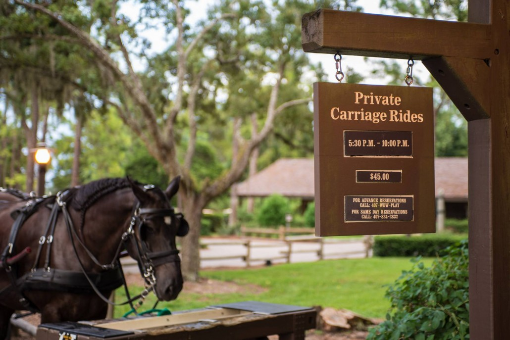 Fort Wilderness offers carriage rides year-round! Photo by Bill Sferrazza.