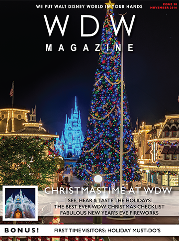 Christmastime at WDW 2016