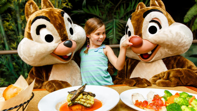 Image result for the garden grill epcot