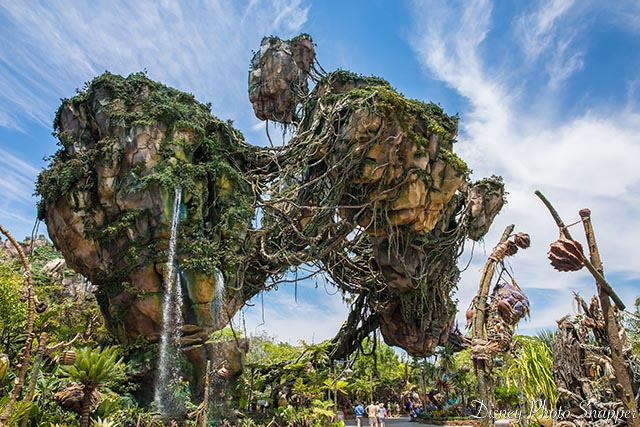 VIP Tours take you behind the scenery at Pandora