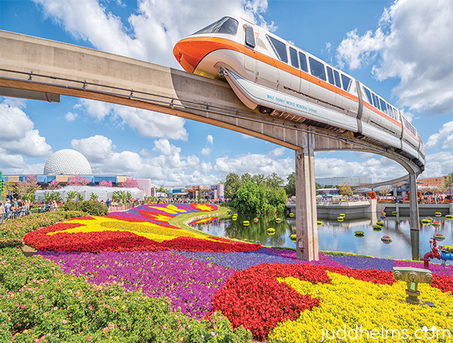 The orange monorail gliding over incredible flowers in Epcot