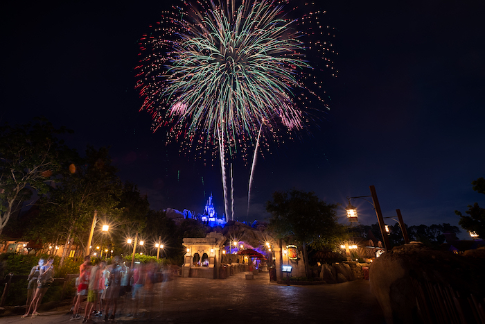 fireworks at walt disney world