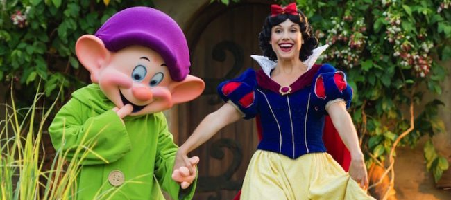 Walt Disney World Package Discounts