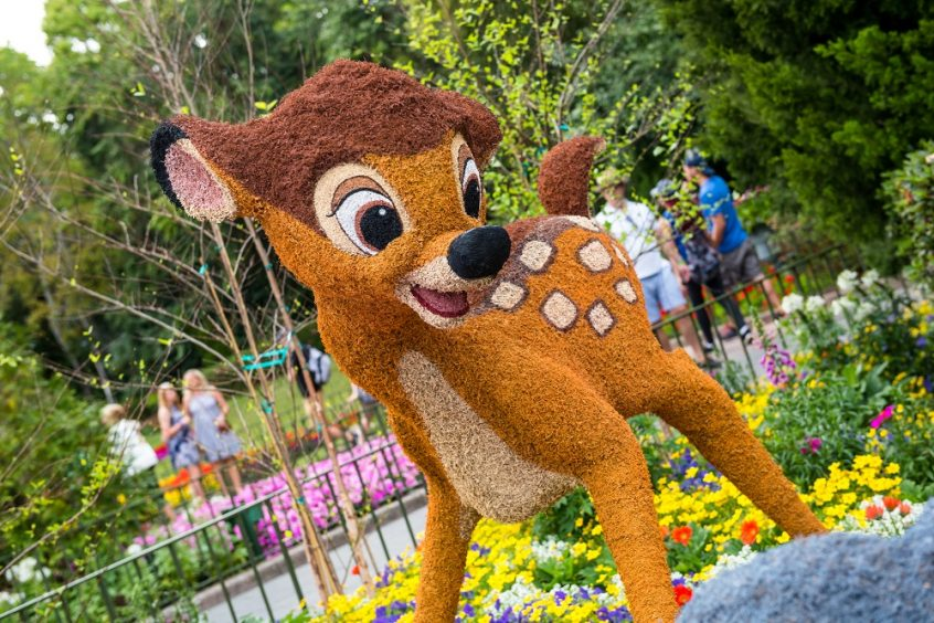 Bambi Topiary at Epcot