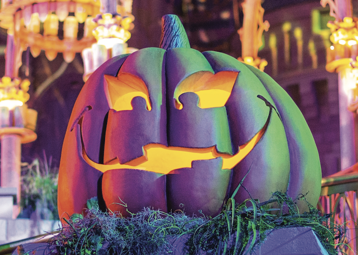 pumpkin at mnsshp