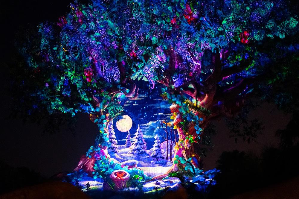Christmas at Animal Kingdom Tree of Life