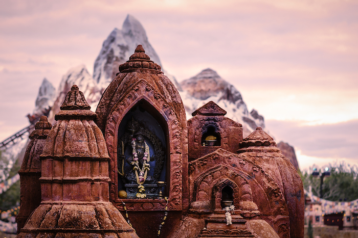 Expedition Everest Shrine - what does animal kingdom look like