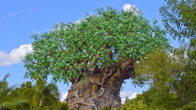 tree of life at animal kingdom - mike billick