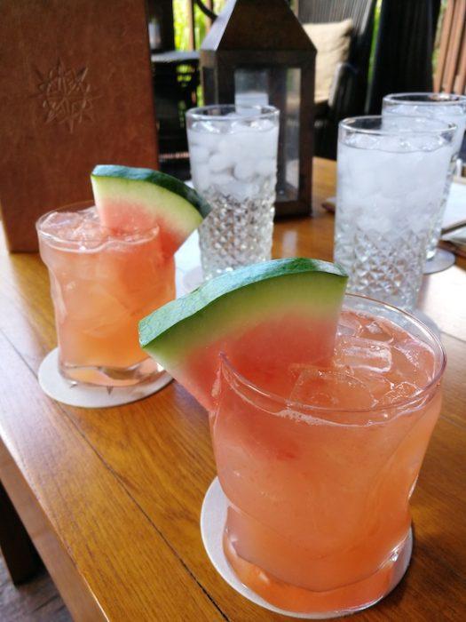 Drink at Nomad Lounge animal kingdom