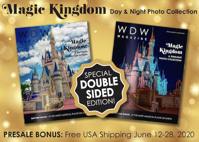 Magic Kingdom Day Night