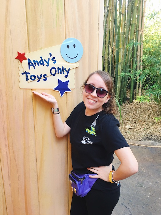 Toy Story Land Andy's Toys Only