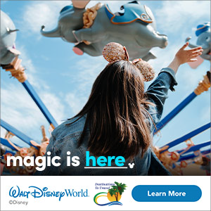 Walt Disney World Blog Destinations to Travel