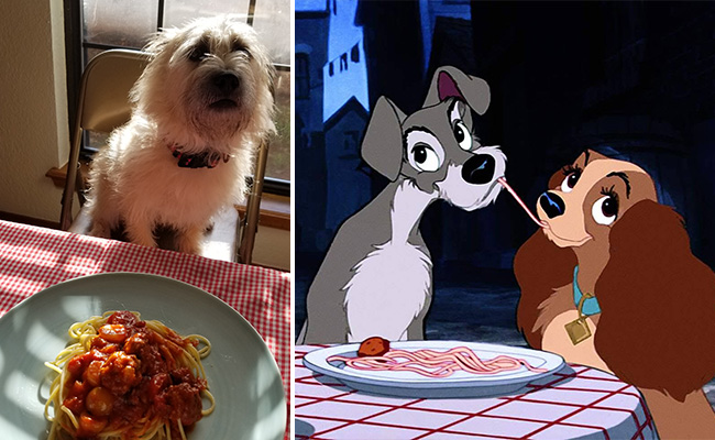 Disney Movie Food Lady And The Tramp Spaghetti And Meatballs