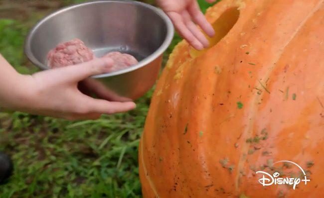 meatball pumpkin animal kingdom