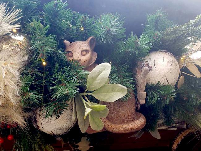 what does disney world look like at christmas at animal kingdom