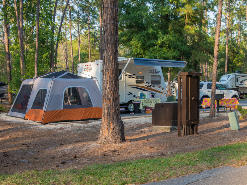 Top 5 Reasons to Stay at Disney's Fort Wilderness Campground