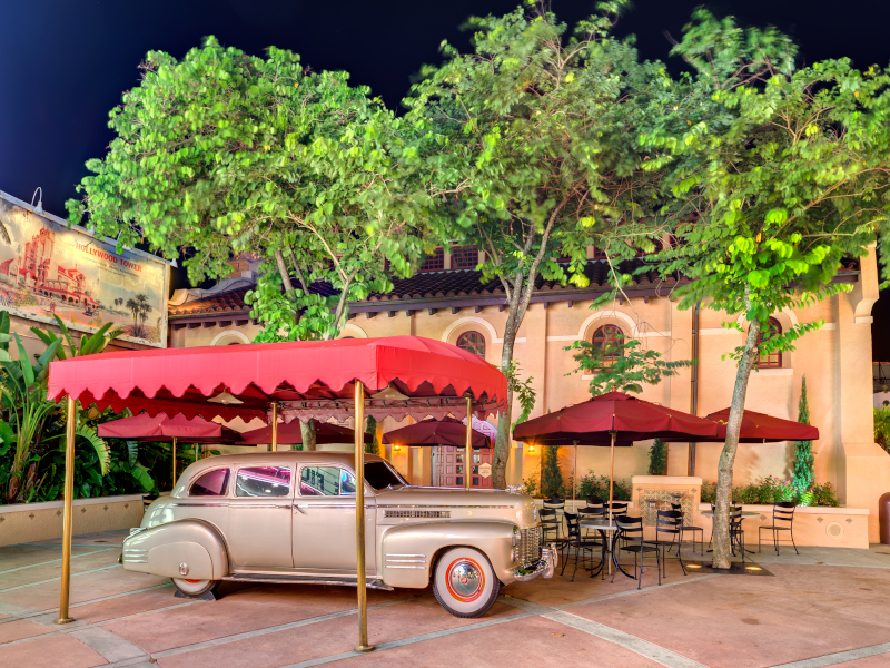 Is a Walt Disney World VIP Tour Right for You?