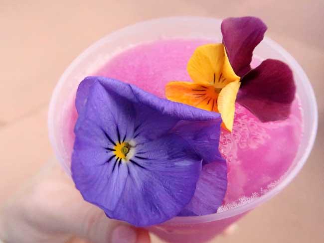 Frozen-Violet-Lemonade-Review-Pineapple-Promenade-EPCOT-2021-Flower-and-Garden Festival-menu-Blanken