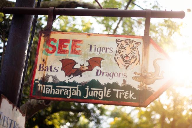 animal kingdom date night on maharajah jungle trek