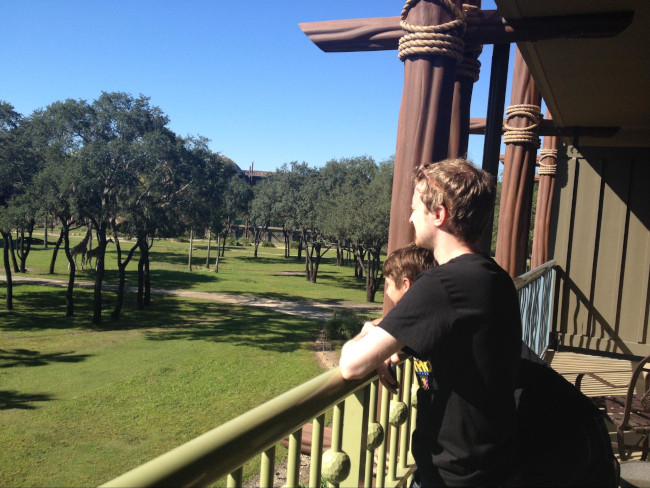 animal kingdom lodge savana view