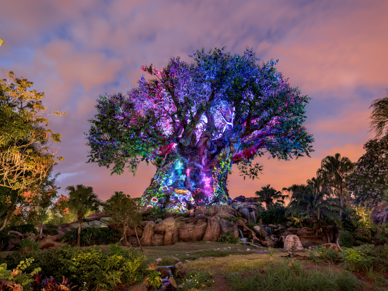 The Tree Of Life at Disney's Animal Kingdom at dusk, illuminated.