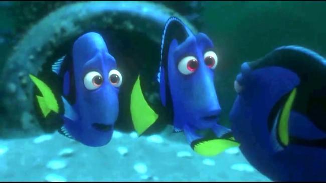 Dorys Parents- purple shells