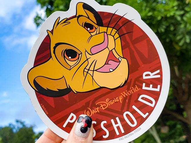 How-To-Buy-A-Walt-Disney-World-Annual-Pass-Right-Now-Passholder-Simba-Magnet-Tatjana-Lazar