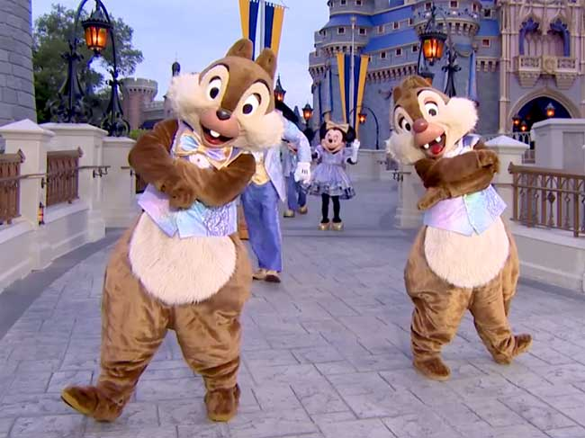 Chip Dale WDW 50th Anniversary Costume Outfit
