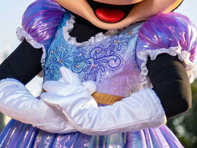 Mickey Minnie Pluto 50th Anniversary Costume Details