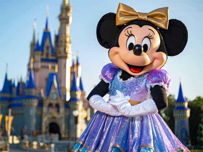 Minnie 50th Anniversary Costume Outfit