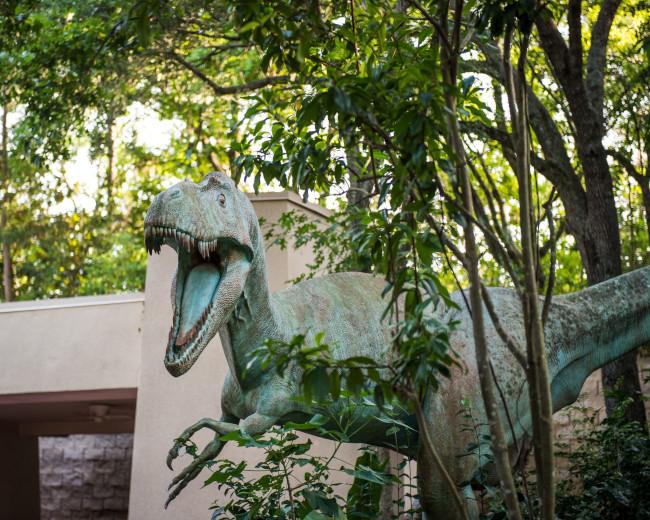 dinosaur_what-does-disney-world-look-like_sapp