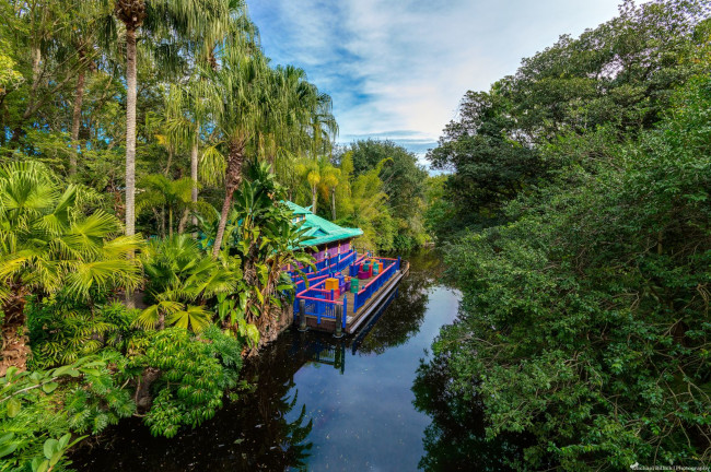 discovery-island_what-does-disney-world-look-like_billick