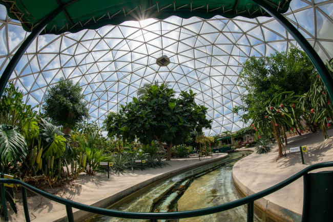 living-with-the-land_what-does-disney-world-look-like_sapp
