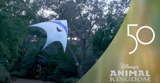 ray-kite_disney-kitetails-behind-the-scenes-video_disney