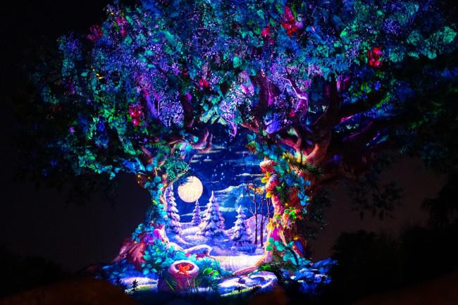 tree-of-life-christmas-awakening-animal-kingdom_what-does-disney-world-look-like-at-christmas_reynolds