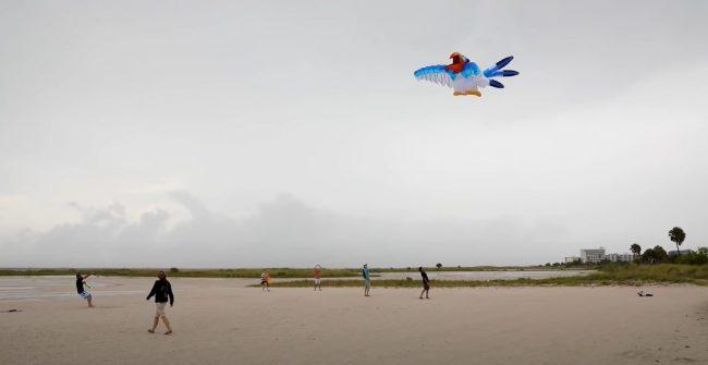zazu-kite-flying_behind-the-scenes-video_featured_disney