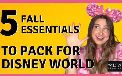 Disney World Fall Packing List: 5 Must-Haves