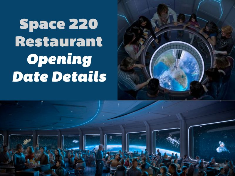 space-220-restaurant-menu-reservations-opening-date-details