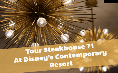 steakhouse-71-interior_contemporary-resort_shuster_featured
