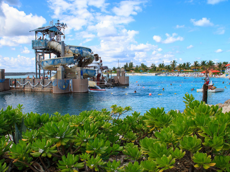 pelican-plunge_things-to-do-at-castaway-cay_featured_smith