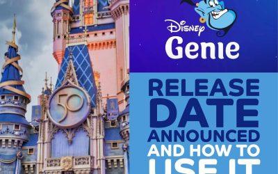 Herrre's GENIE! Disney Genie Release Date Is Sooner Than You Think